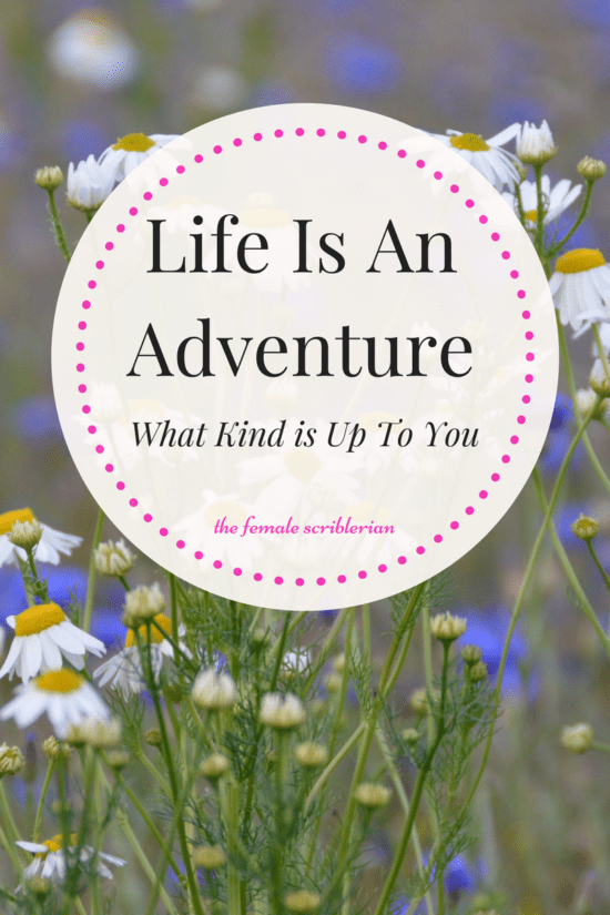 Life is an Adventure, What Kind is Up to You