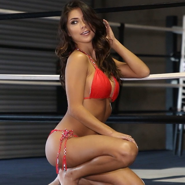 Ufc Xi Ring Girls