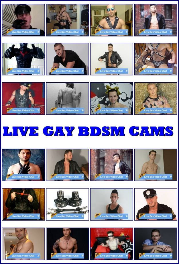 gay cams Live
