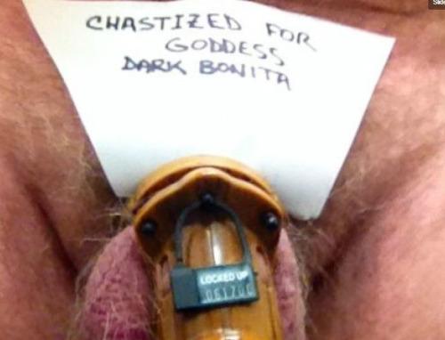 orgasm control chastity