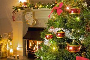 christmastreeassociation.org