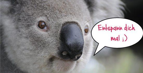 Auf die Frage was kann man gegen Dehnungsstreifen machen weiß der Koala die Antwort: Entspannung!