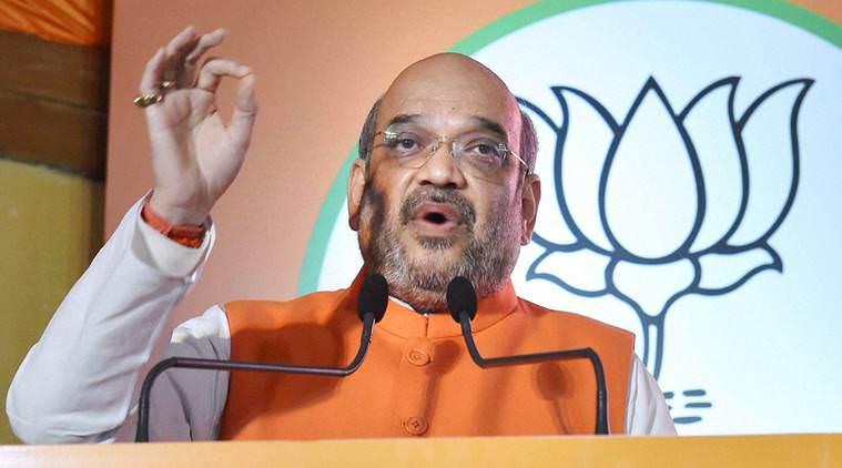 Amit Shah at the BJP elections