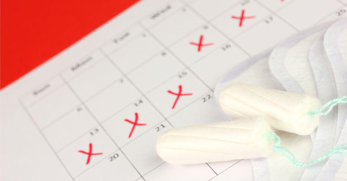 menstruation benefit bill