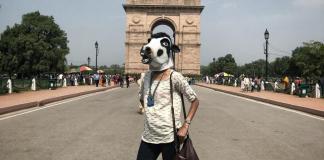 Mere Paas (Gau) Maa Hai: Modi's India and Cow Vigilantism