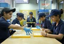 Diversity In Manufacturing: Socio-Economic Context