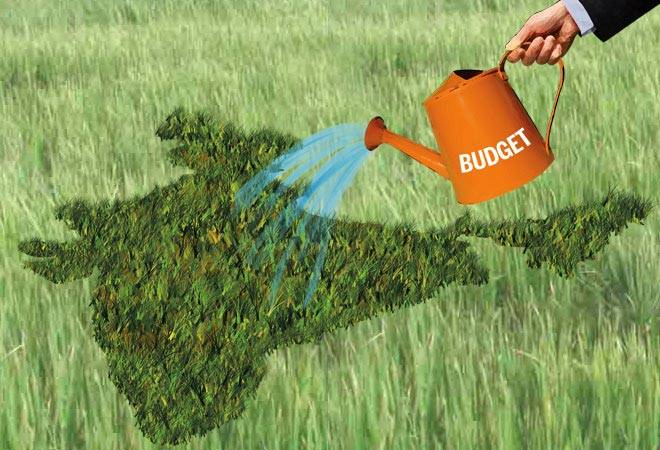 Budget 2020: Why Are Feminists Worried About Agricultural Sectors?