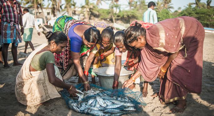 Fisherwomen In Kerala And Their Discontentment With Globalisation