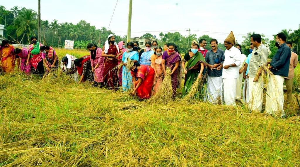 How Is Kerala's Kudumbashree Model Helping Combat The Pandemic?