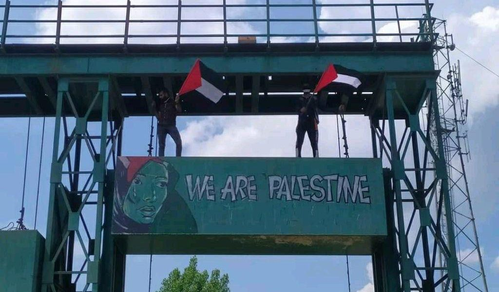 The Art Of Dissent: In Solidarity With Palestine