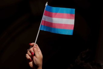 Tasmania's Upper House on track to pass landmark legislation to make gender optional on birth certificates