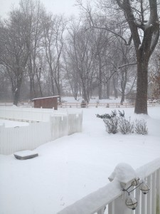 View of the first snow in December 2013.