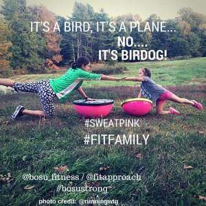 It's a Bird, it's a Plane... (2)
