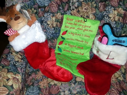 Stockings for Bit, Fred and Lee