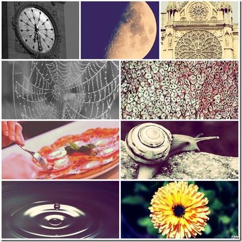 Spirographe_Serena_Carniel