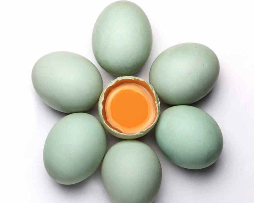 Raw Egg For Fertility
