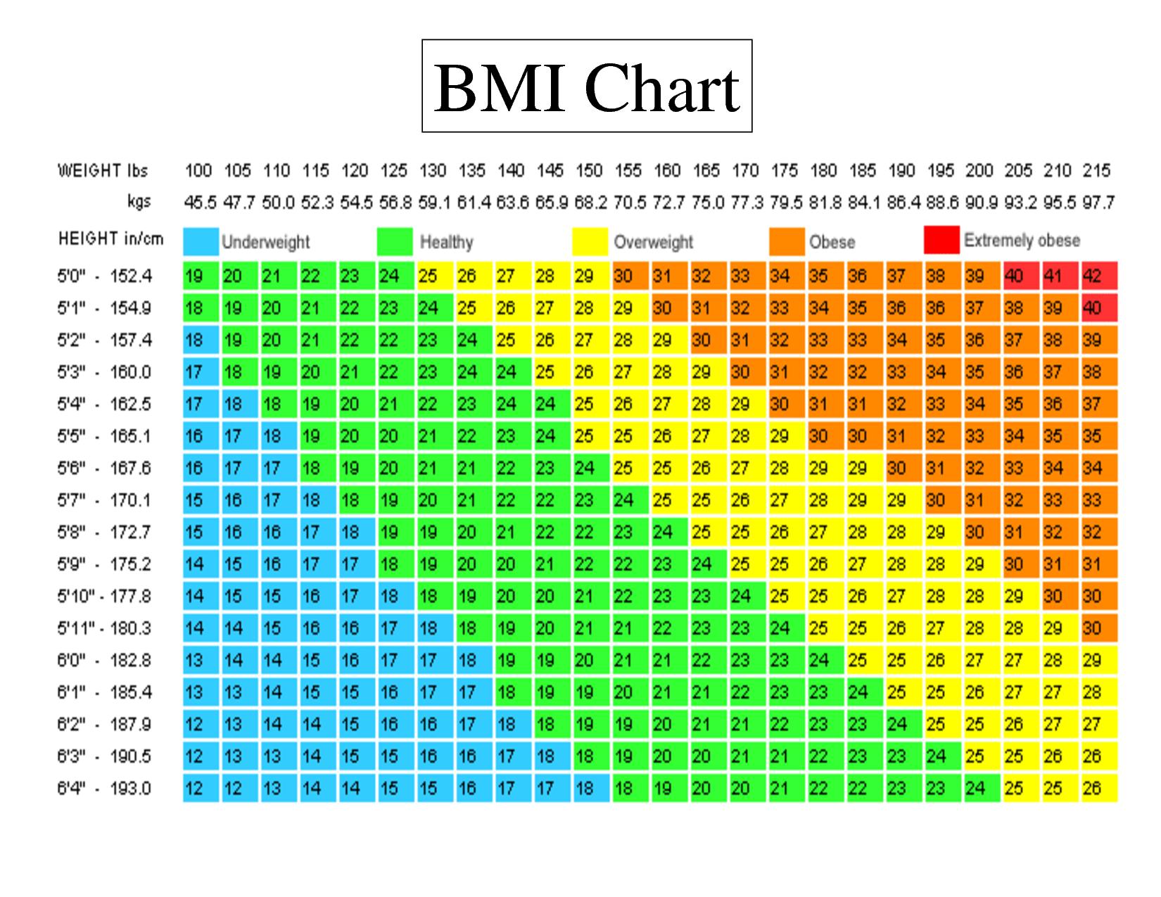 Bmi chart also fitness  page femuscleblog rh wordpress