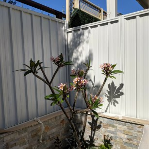 Fence Makeovers Perth