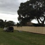 Timber paling fence Epping