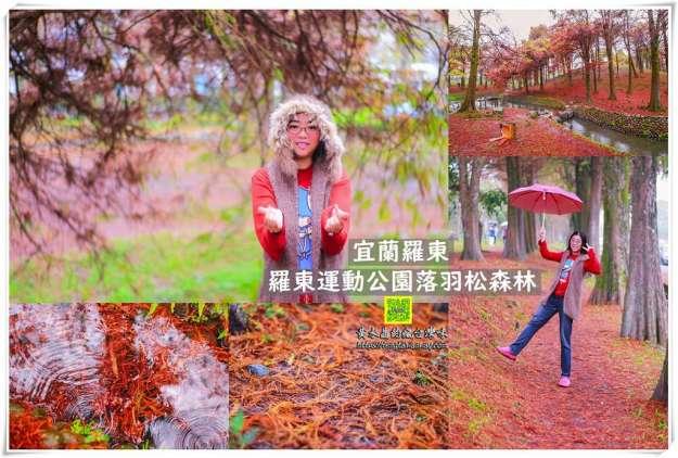 羅東運動公園東丘落羽松森林【宜蘭景點】|冬季限定鐵鏽色的地毯宛如韓國南怡島冬季戀歌拍攝場景