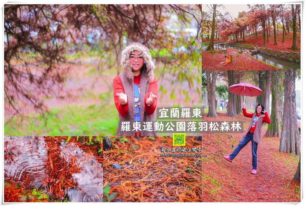 羅東運動公園東丘落羽松森林【宜蘭景點】 冬季限定鐵鏽色的地毯宛如韓國南怡島冬季戀歌拍攝場景 @黃水晶的瘋台灣味