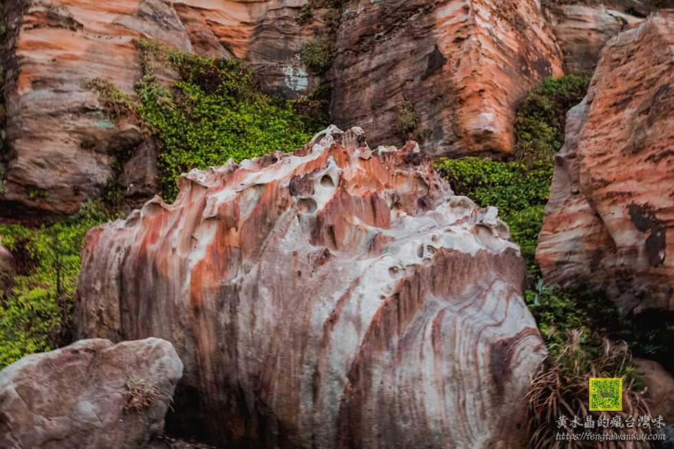南雅奇岩【新北景點】 東北角必遊的哮天犬海狗岩及永不融化霜淇淋岩 @黃水晶的瘋台灣味