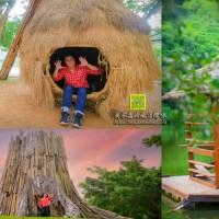 三坑自然生態公園【桃園景點】|龍潭三坑3.8公頃原始生態親子景點;闔家野餐&親子戲水&晨昏攝影&3D彩繪河堤自行車道