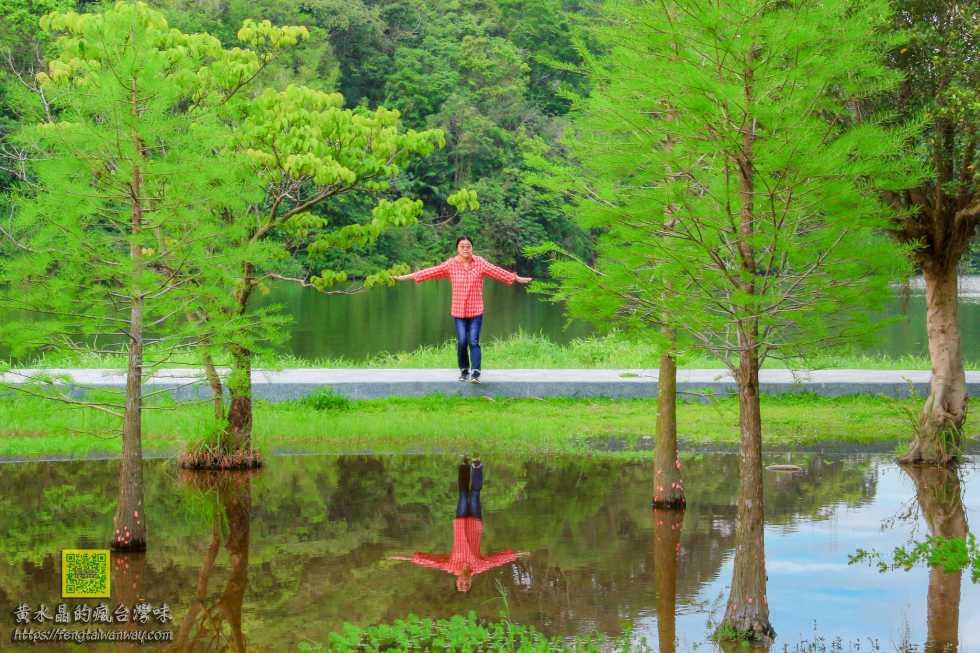 三坑自然生態公園【桃園景點】|龍潭三坑3.8公頃原始生態親子景點;闔家野餐&親子戲水&晨昏攝影&3D彩繪河堤自行車道 @黃水晶的瘋台灣味