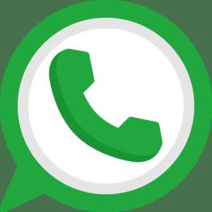 Whatsapp Fenice Comunicazione
