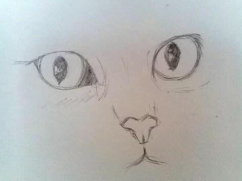 Как нарисовать кота карандашом? Шаг 4. Портреты карандашом - Fenlin.ru