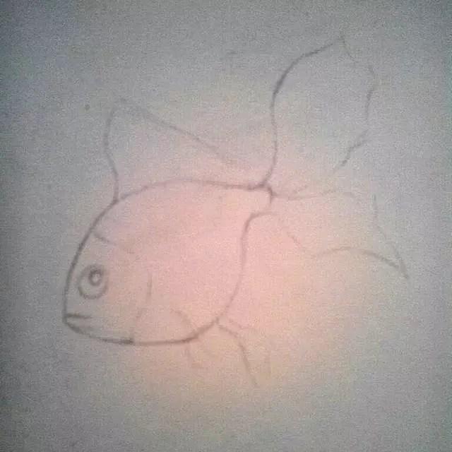 Как нарисовать золотую рыбку? Шаг 1. Портреты карандашом - Fenlin.ru