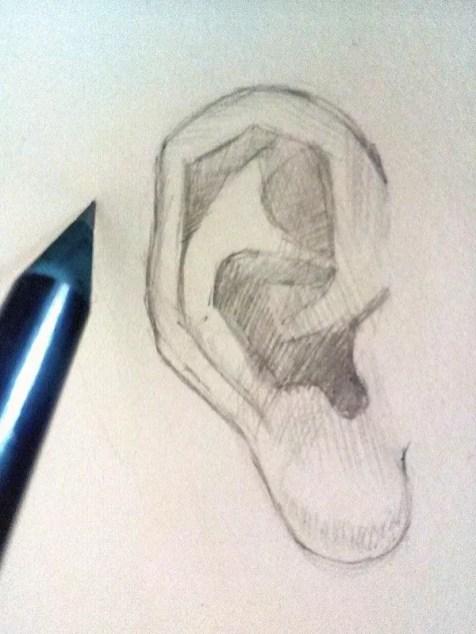 Как нарисовать ухо человека карандашом? Шаг 5. Портреты карандашом - Fenlin.ru