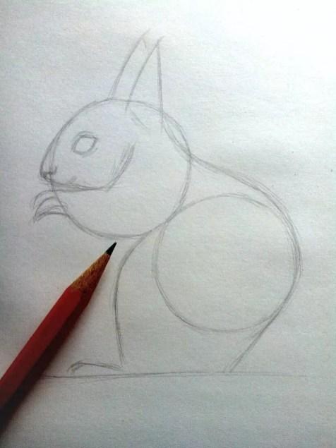 Как нарисовать белку карандашом? Шаг 5. Портреты карандашом - Fenlin.ru