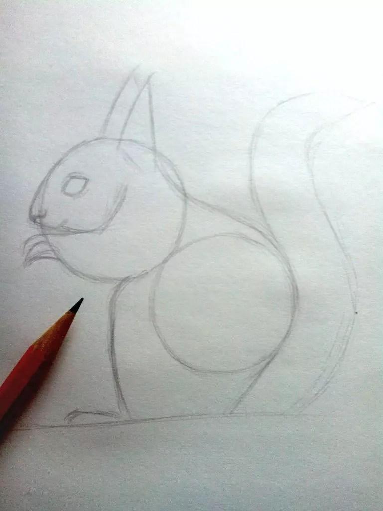 Как нарисовать белку карандашом? Шаг 6. Портреты карандашом - Fenlin.ru