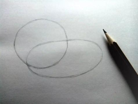 Как нарисовать льва карандашом? Шаг 2. Портреты карандашом - Fenlin.ru
