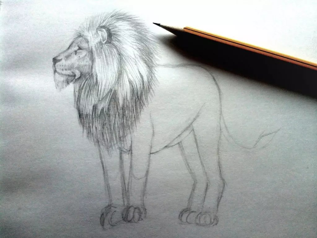 Как нарисовать льва карандашом? Шаг 8. Портреты карандашом - Fenlin.ru