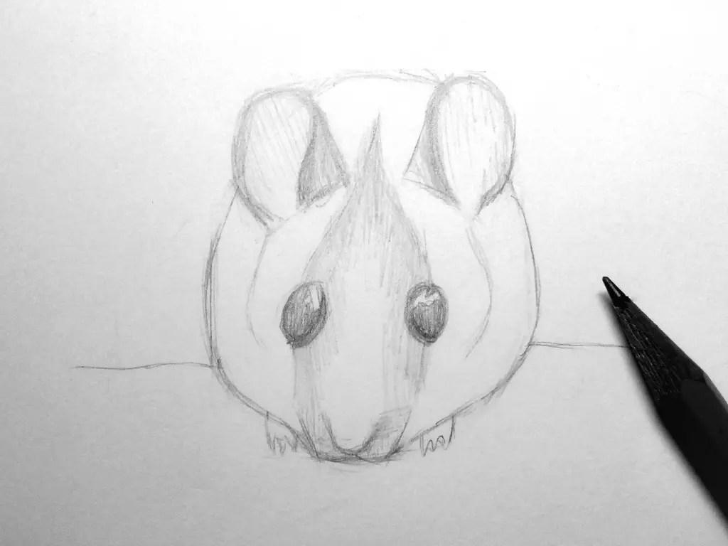 Как нарисовать мышку карандашом? Шаг 12. Портреты карандашом - Fenlin.ru