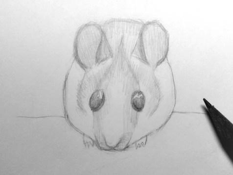 Как нарисовать мышку карандашом? Шаг 13. Портреты карандашом - Fenlin.ru