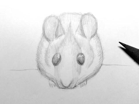 Как нарисовать мышку карандашом? Шаг 14. Портреты карандашом - Fenlin.ru