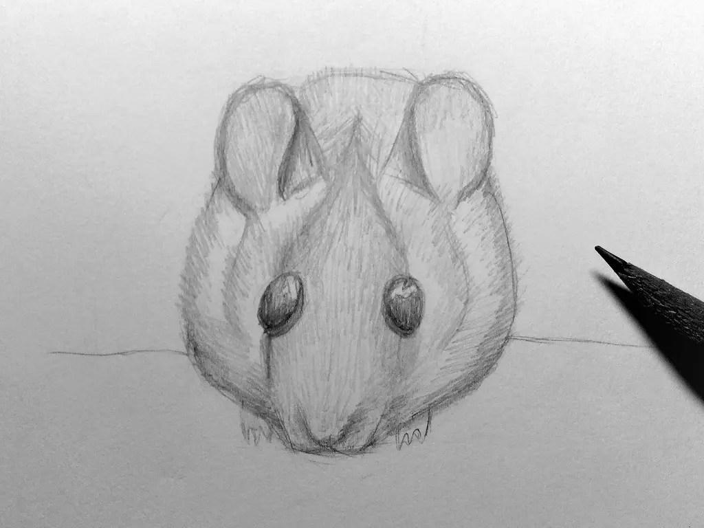 Как нарисовать мышку карандашом? Шаг 15. Портреты карандашом - Fenlin.ru