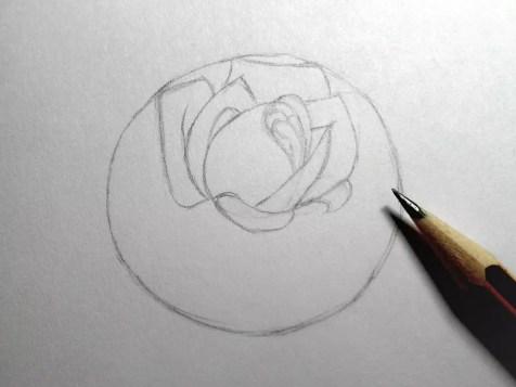 Как нарисовать розу карандашом? Шаг 7. Портреты карандашом - Fenlin.ru