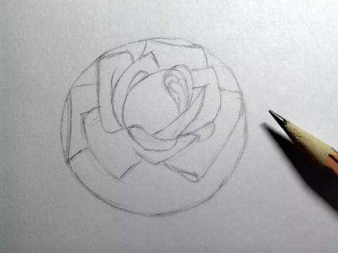 Как нарисовать розу карандашом? Шаг 8. Портреты карандашом - Fenlin.ru