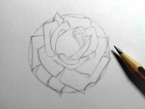Как нарисовать розу карандашом? Шаг 9. Портреты карандашом - Fenlin.ru