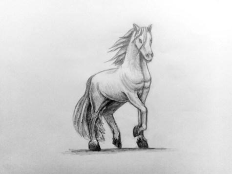 Как нарисовать лошадь карандашом? Поэтапный урок. Шаг 18. Портреты карандашом - Fenlin.ru