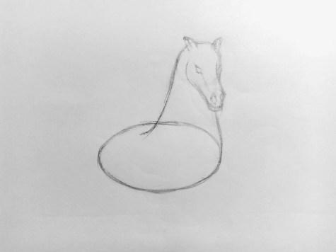 Как нарисовать лошадь карандашом? Поэтапный урок. Шаг 6. Портреты карандашом - Fenlin.ru