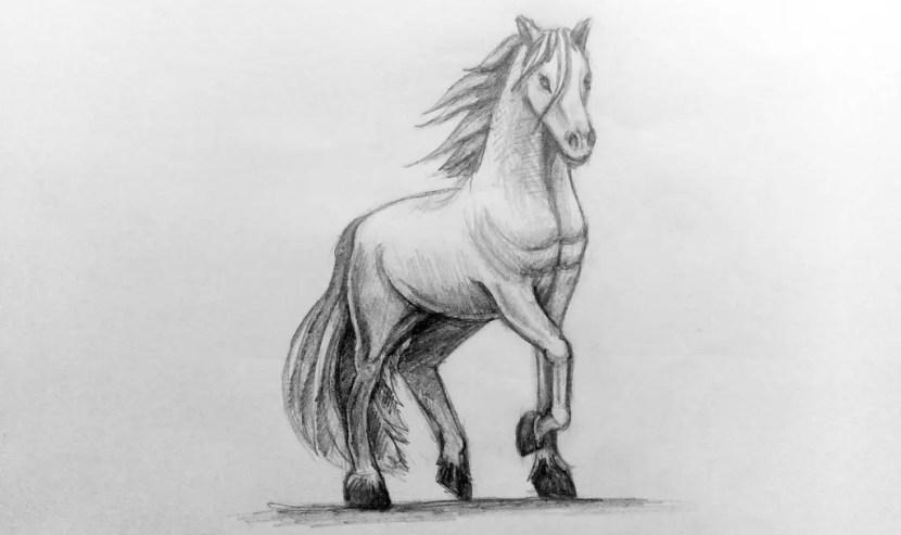 Как нарисовать лошадь карандашом? Поэтапный урок. Портреты карандашом - Fenlin.ru
