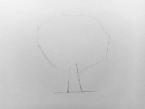 Как нарисовать дерево карандашом? Поэтапный урок. Шаг 2. Портреты карандашом - Fenlin.ru