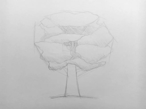 Как нарисовать дерево карандашом? Поэтапный урок. Шаг 6. Портреты карандашом - Fenlin.ru