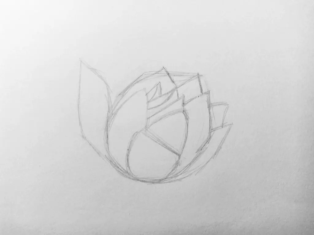 Как нарисовать цветок карандашом? Поэтапный урок. Шаг 4. Портреты карандашом - Fenlin.ru