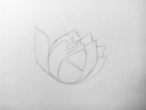 Как нарисовать цветок карандашом? Поэтапный урок. Шаг 5. Портреты карандашом - Fenlin.ru